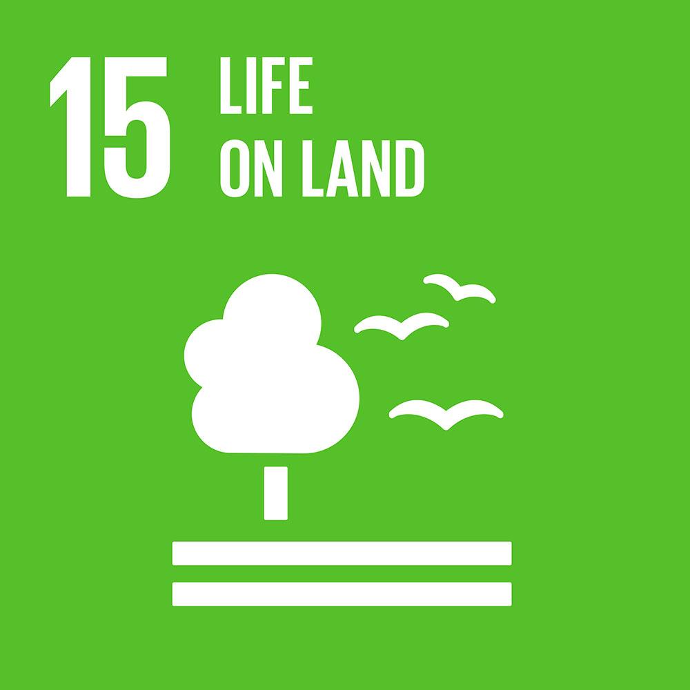 SDG15 Life on Land